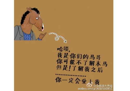 "Chinese text says: ""Hello, I am your horse brother. You might not understand me, but when you do, you will definitely love me."""